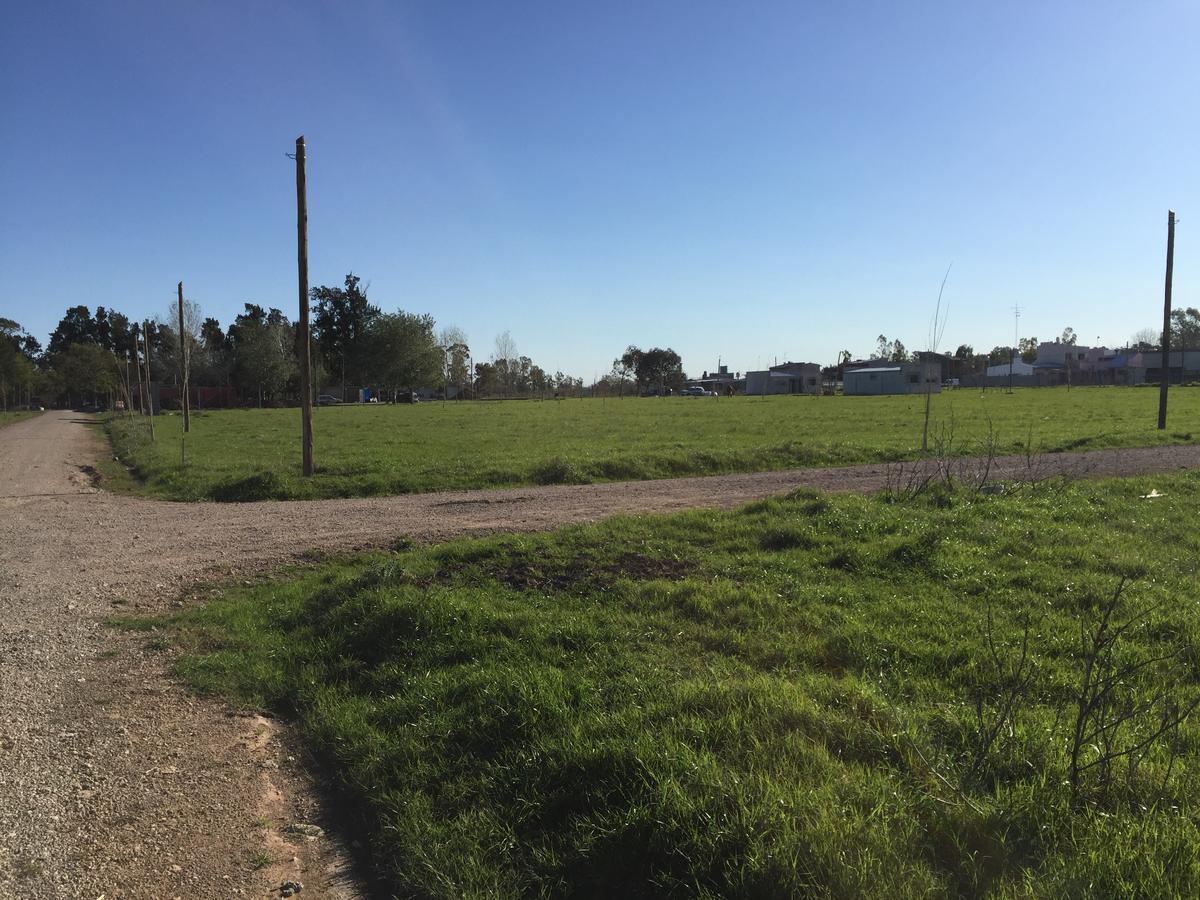 Foto Barrio Abierto en Los Hornos 133 y 85 número 5