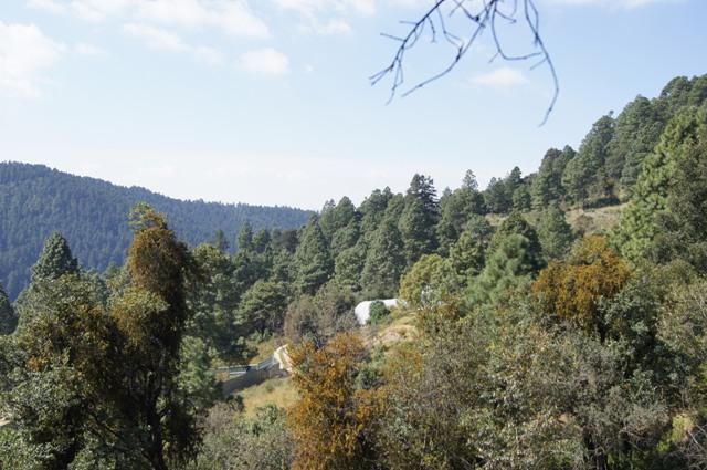 Foto Barrio Privado en Cañada de Alférez Cañada de Alférez número 7
