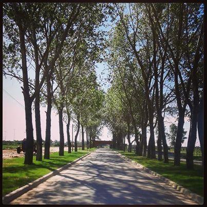 Foto Barrio Privado en La Alameda Caceres y Ruta 58 (KM 9,5) número 2