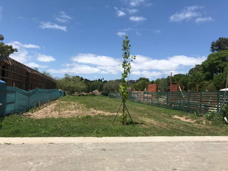 Foto Condominio Industrial en Beccar Treinta y Tres Orientales 1180 número 6