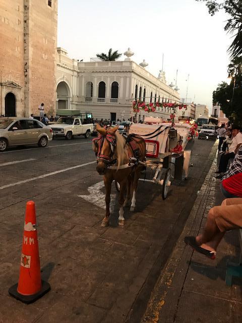 Foto Condominio en Pueblo Sitpach Departamentos y casas en Merida Yucatan  número 4