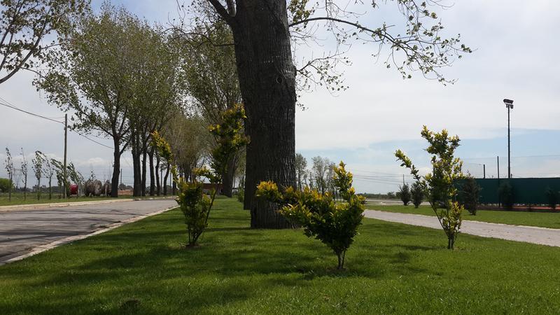 Foto Barrio Privado en La Alameda             F. Cáceres y Ruta 58           número 4