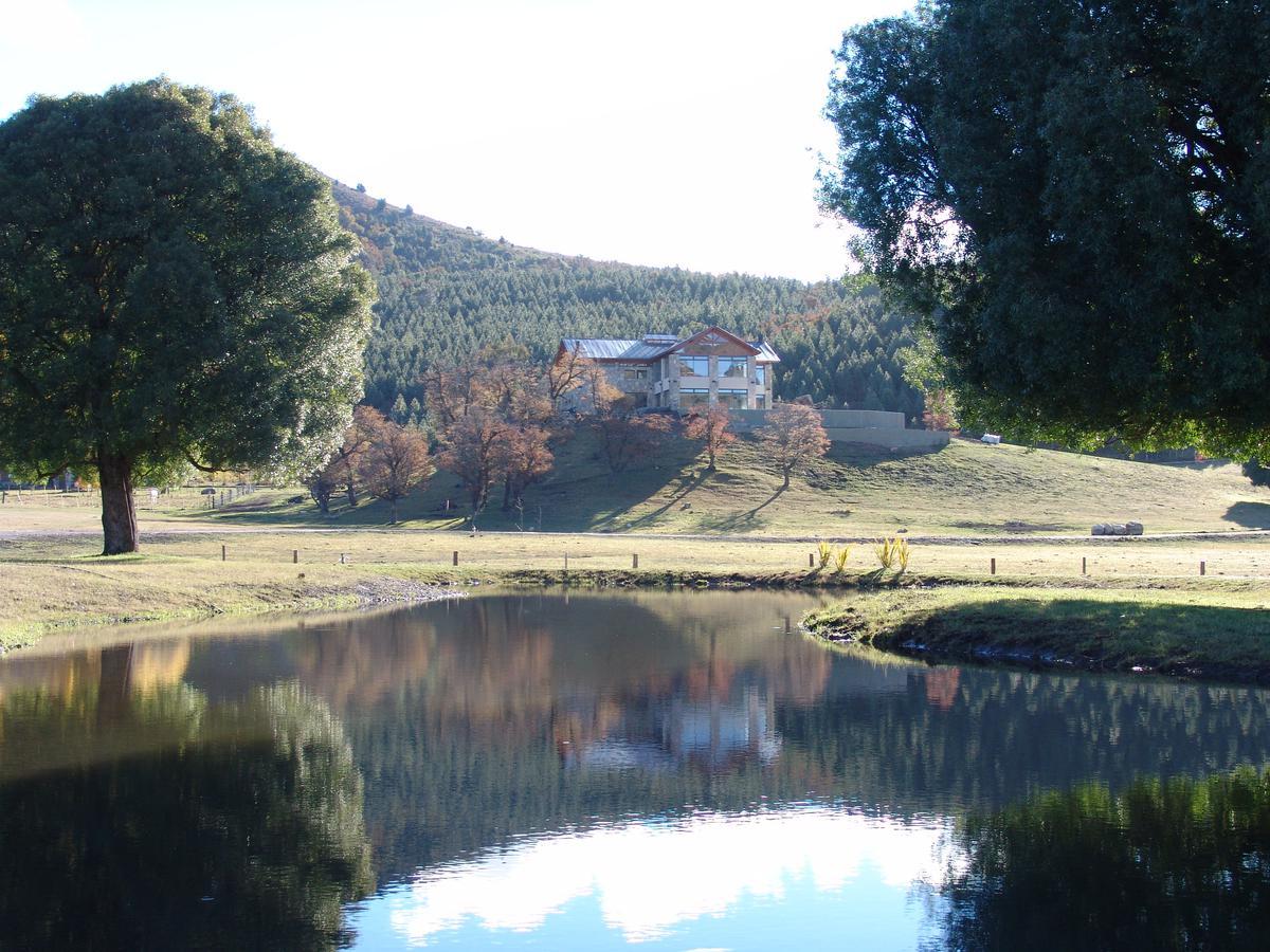 Foto Terreno en Venta en  Log Log,  Lacar  Ruta Provincial Nº 62. Camino a Lago Lolog al 100