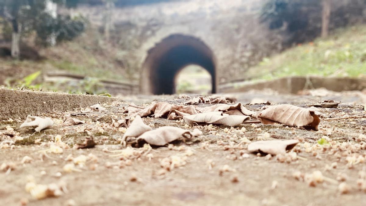 Foto  en Fraccionamiento Exhacienda el Lencero Fraccionamiento La Cañada El Lencero, Emiliano Zapata Ver, a 5 minutos de Xalapa Capital.