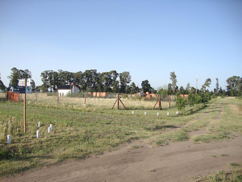 Foto Otro en Norte Ruta Prov. 101 e/ 365 y 317 número 4