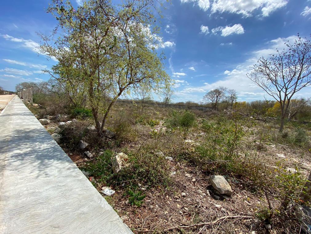 Foto Barrio Abierto en Pueblo Dzitya terrenos con servicios en dzitya,  al norte de mérida, con financiamiento  número 12