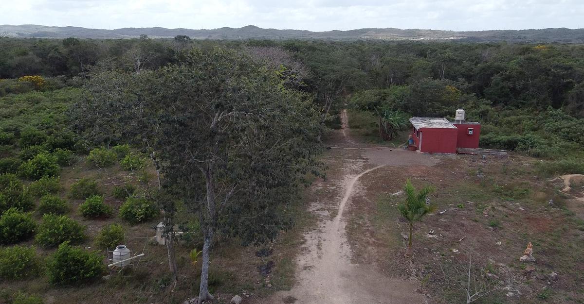 Foto Comercial en Pueblo Oxkutzcab Terrenos sobre carretera para uso comercial, en oxkutzcab número 6
