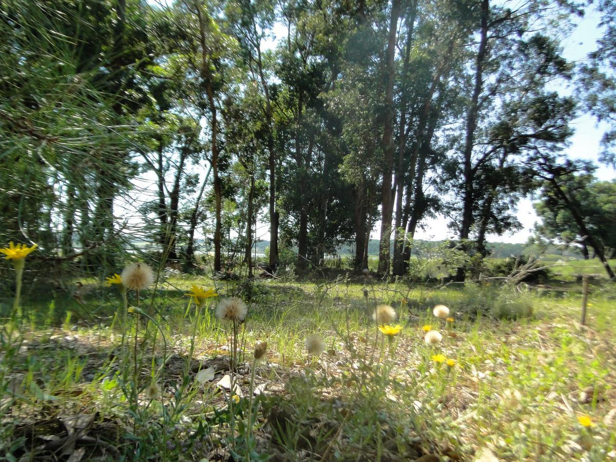 Foto Terreno en Venta en  Montoya,  La Barra  La Reserva 69