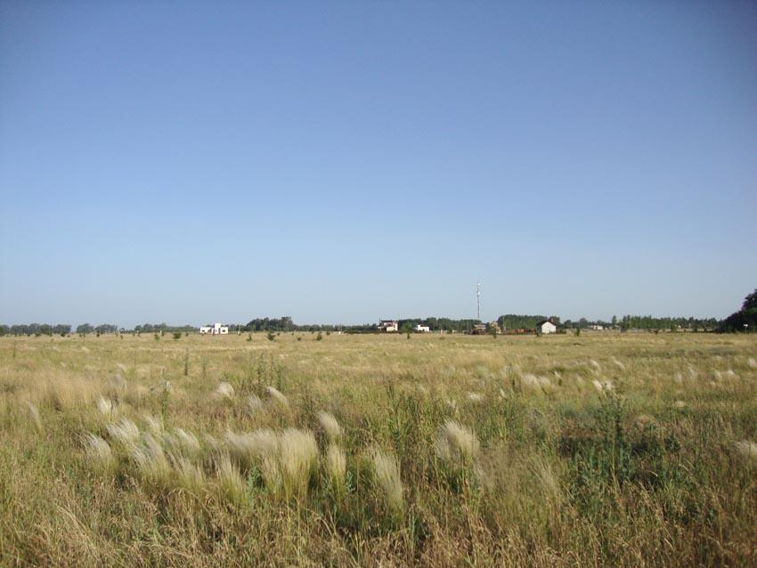 Foto Otro en Norte Ruta Prov. 101 e/ 365 y 317 número 6