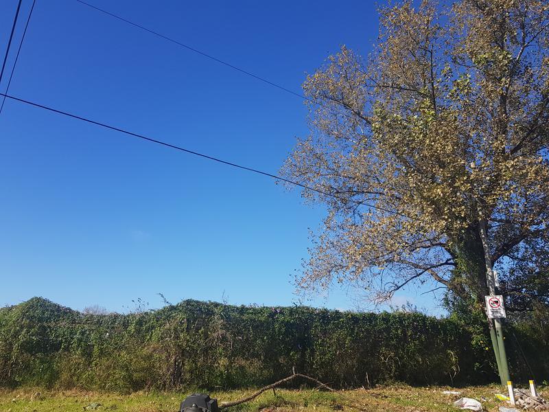 Foto Condominio en Lomas de Zamora Oeste Oliden y Boqueron número 9