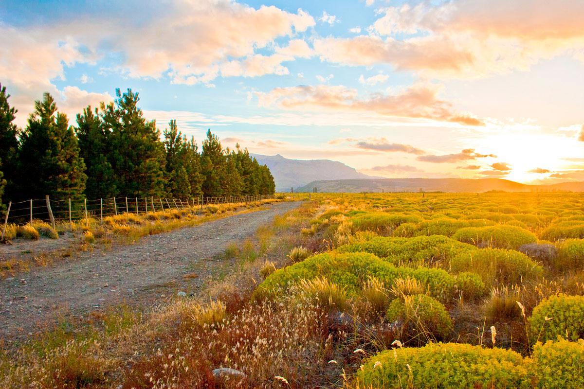 Foto Country en San Martin De Los Andes San Martín de los Andes número 23