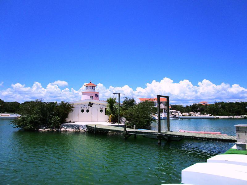 Foto  en Puerto Aventuras Puerto Aventuras