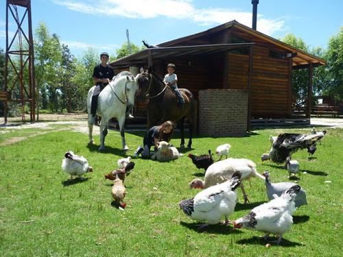 Foto Rural en La Lucila Del Mar Ruta 11 Km 338  número 8