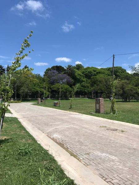 Foto Condominio Industrial en Beccar Treinta y Tres Orientales 1180 número 10