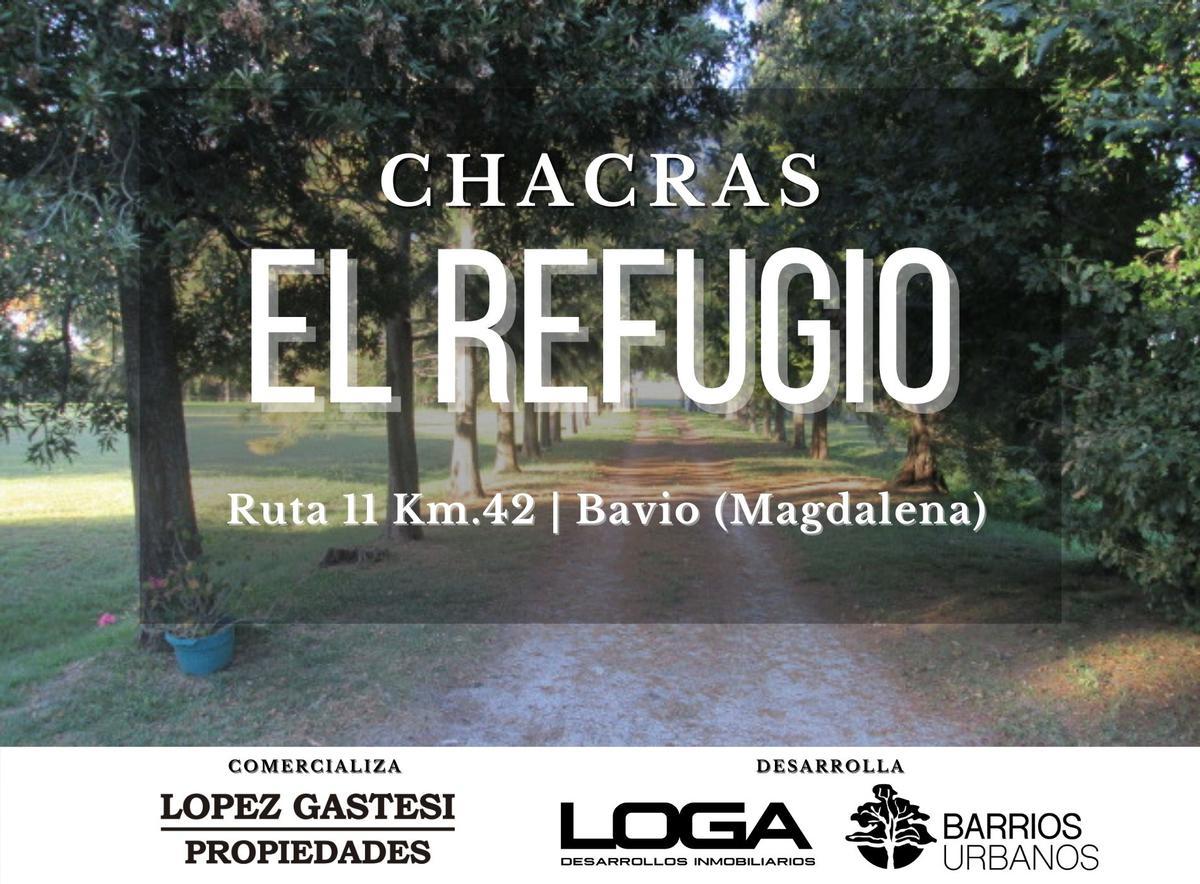 Foto  en El Pino Chacras EL REFUGIO   Ruta 11-Km.42 (Bavio)
