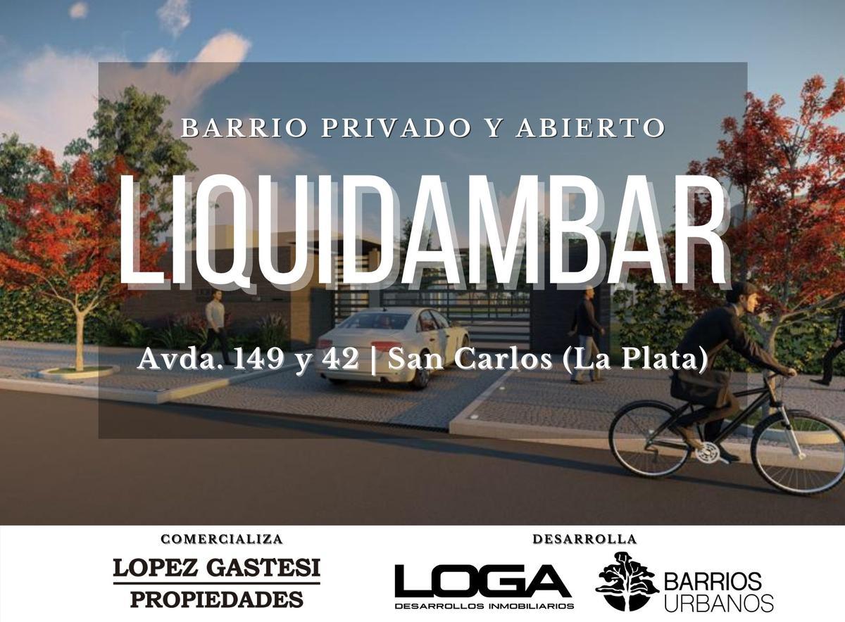 Foto  en La Plata LIQUIDAMBAR   Avda. 149 y 42 (San Carlos)