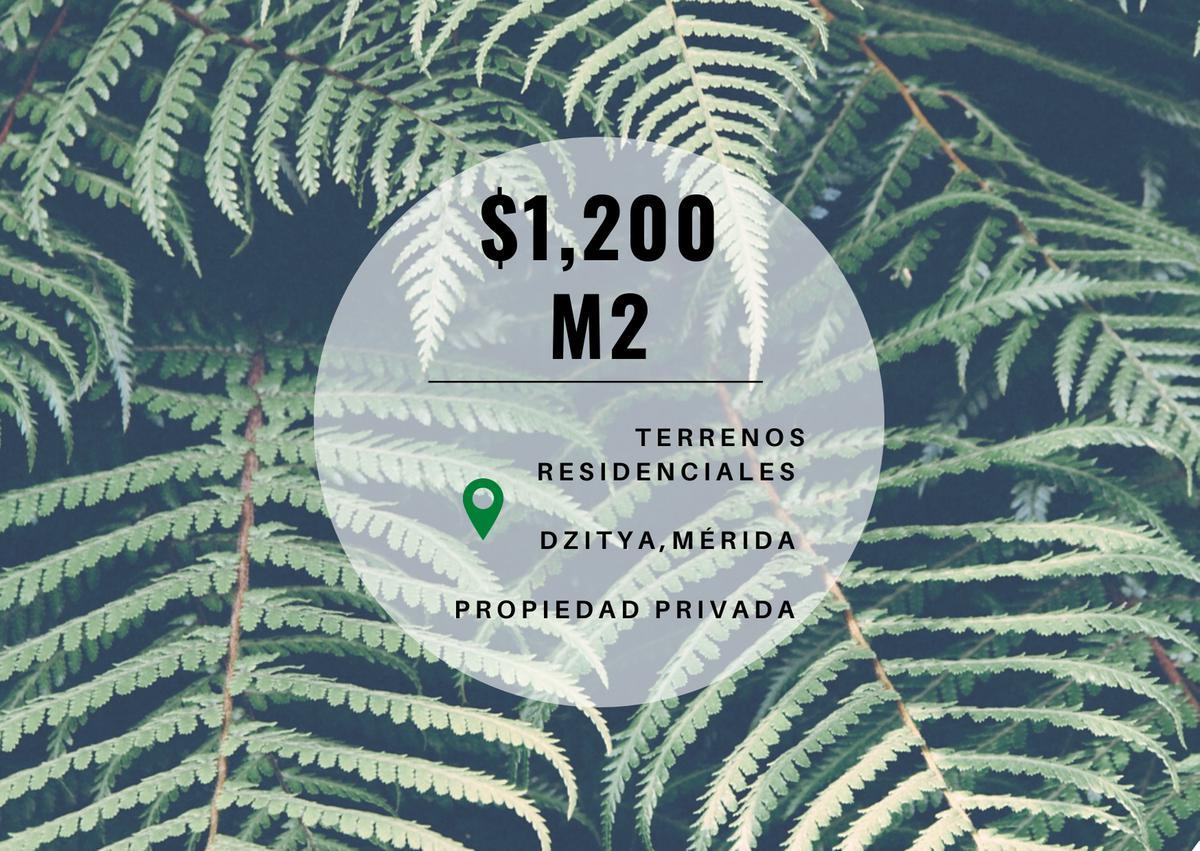 Foto  en Pueblo Dzitya terrenos con servicios en dzitya,  al norte de mérida, con financiamiento