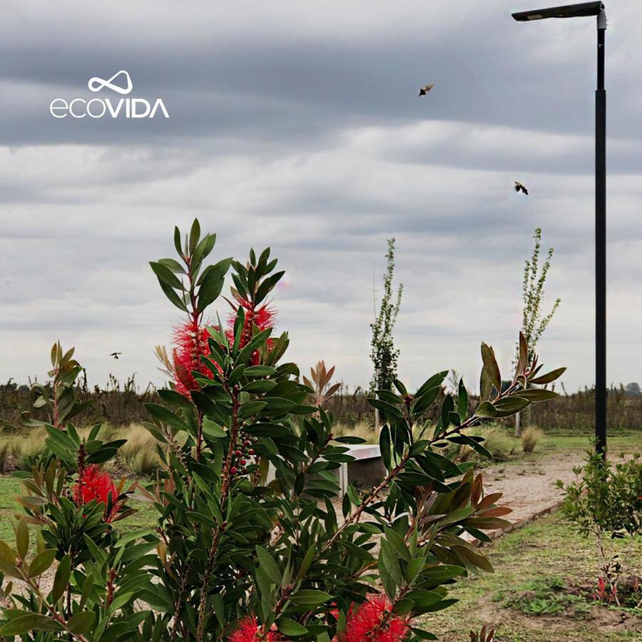 Foto Terreno en Venta en  Villa Amelia,  Rosario  Ruta 18 Km 13