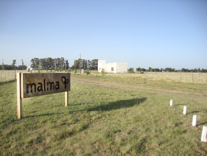 Foto Otro en Norte Ruta Prov. 101 e/ 365 y 317 número 3
