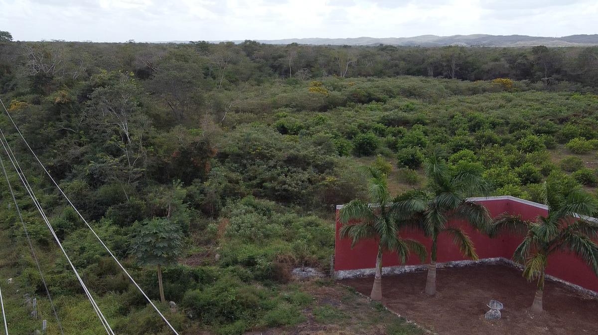 Foto Comercial en Pueblo Oxkutzcab Terrenos sobre carretera para uso comercial, en oxkutzcab número 5