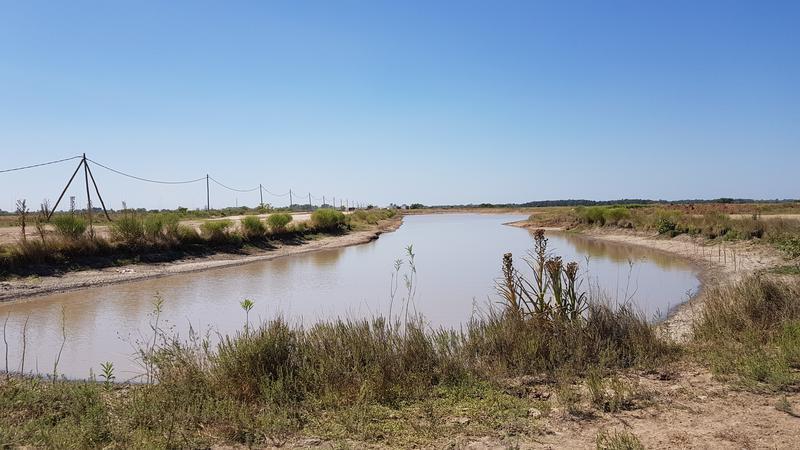 Foto Country en Presidente Peron Av. N. Kirchner Y Ruta 16 numero 6