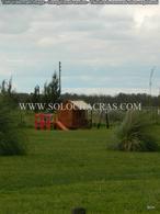 Foto Terreno en Venta en  Chacras de Uribelarrea,  Uribelarrea  Chacras de Uribelarrea - Ruta al 205 km 82 Uribelarrea, Cañuelas, Buenos Aires