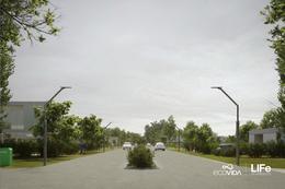 Foto Barrio Abierto en Villa Amelia EcoVida - Villa Amelia (Ruta 18, km 13) número 8