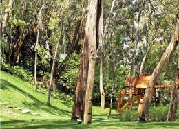 Foto Barrio Privado en Santa Fe Cuajimalpa Magna Residencial  departamentos en renta (MC) número 4