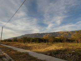 Foto Barrio Abierto en Centro Merlo San Luis número 11