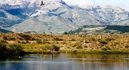 Foto Country en San Martin De Los Andes San Martín de los Andes número 27