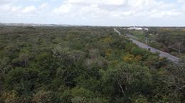 Foto Comercial en Pueblo Oxkutzcab Terrenos sobre carretera para uso comercial, en oxkutzcab número 3