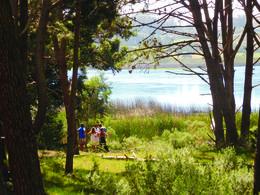 Foto Terreno en Venta en  Montoya,  La Barra  La Reserva 46