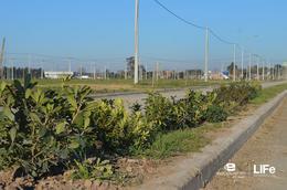 Foto Barrio Abierto en Alvear Av. Rubini y RP 21 número 18