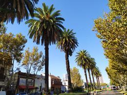 Foto Edificio en Tigre Lavalle 499 número 15