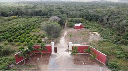 Foto Comercial en Pueblo Oxkutzcab Terrenos sobre carretera para uso comercial, en oxkutzcab número 1