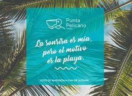 Foto Barrio Privado en Telchac Puerto   Punta Pelícano | Bloque 4       número 3