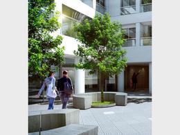 Foto Edificio en La Blanqueada Un grand lugar para vivir número 3