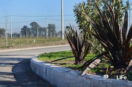 Foto Barrio Abierto en Alvear Av. Rubini y RP 21 número 16