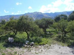 Foto Barrio Abierto en Piedra Blanca Arriba Dos Venados 2900 número 6