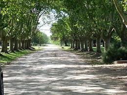 Foto Barrio Privado en Estancia Villa Maria Estancia Villa Maria - Av. Pereda número 6