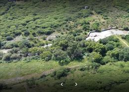 Foto Edificio en Juriquilla Anillo Vial Fray Junipero Sierra 22650, Juriquilla, Querétaro. número 3