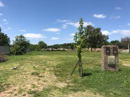 Foto Condominio Industrial en Beccar Treinta y Tres Orientales 1180 número 5