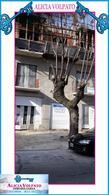 Foto Edificio en Wilde MARIANO MORENO 6500 número 1