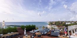 Foto Barrio Abierto en Solidaridad Calle Albatros y Calle Pelicanos, Playa del carmen, Quintana Roo número 8