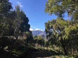 Foto Terreno en Venta en  Esquel,  Futaleufu  Calle Lahuan - Villa Ayelén