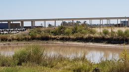 Foto Country en Presidente Peron Av. N. Kirchner Y Ruta 16 numero 4