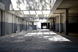 Foto Edificio en Parque Batlle Sobre calle tranquila , a metros del  parque  número 14