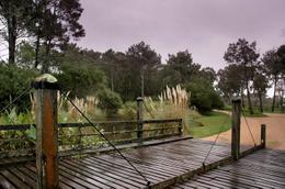 Foto Barrio Privado en Manantiales Uruguay Link  número 6