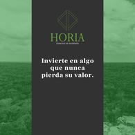 Foto Barrio Privado en Pueblo Tixkuncheil Horia número 4