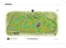 Foto thumbnail unidad Terreno en Venta en  La Providencia,  Countries/B.Cerrado  La Providencia LAKE II, Ruta 52 KM 9,5